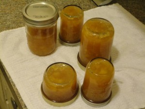 Cooling Quince Jam Oct 2012